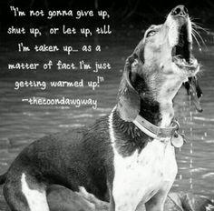 So true!!! I have a dog like this. Black & Tan female.