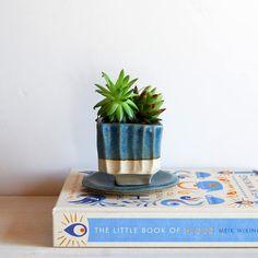 Succulent pot with drainage hole Cactus pot Small plant pot