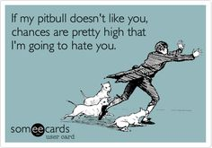 true that and if you don't like my pitbull i probably won't like you either..