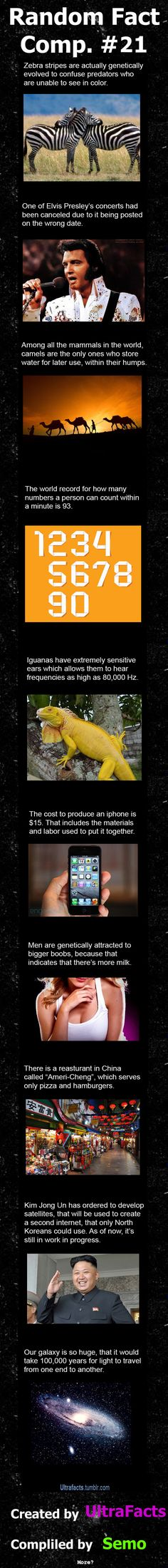 Random Fact Comp. 21 // funny pictures - funny photos - funny images - funny pics - funny quotes - #lol #humor #funnypictures