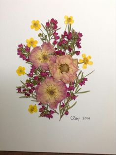 Pressed flower art with pink roses, pink boronia, and wild buttercups.