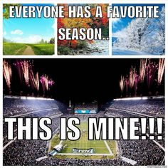 Not an Eagles fan but I do love me some football 😍🙌🏽🏈 Eagles Memes, Go Eagles, Nfl Memes, Fly Eagles Fly, Football Memes, Sport Football, Football Season, Sports Teams, Philadelphia Eagles Football