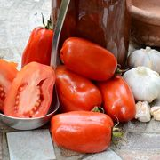 San Marzano Tomato Organic