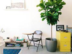 Love the bookshelf!  Jeanette's Bright Live/Work Loft — House Call