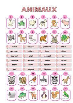 Animaux, dictionnaire visuel fiche d'exercices - Fiches pédagogiques gratuites FLE