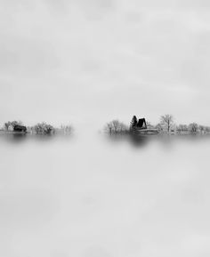 photography by gecdra Image Photography, White Photography, Landscape Photography, Minimalist Landscape, Misty Forest, Black And White Portraits, Amazing Pics, Photo Black, White Aesthetic