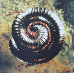 Nine Inch Nails / Closer