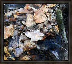 """""""Microcosm in an Autumn Pond"""" ~ © 2016 RC deWinter ~ A close-up view of bit and pieces of nature lying in a rural pond in Haddam, Connecticut, after a rainstorm. Shown here as a 24"""" x 27"""" fine art print on Hahnemuhle Torchon paper, Providence Black frame, finished size  27¼"""" x 30¼"""". Available in a wide range of media, sizes and configurations. Pinterest prices inaccurate."""