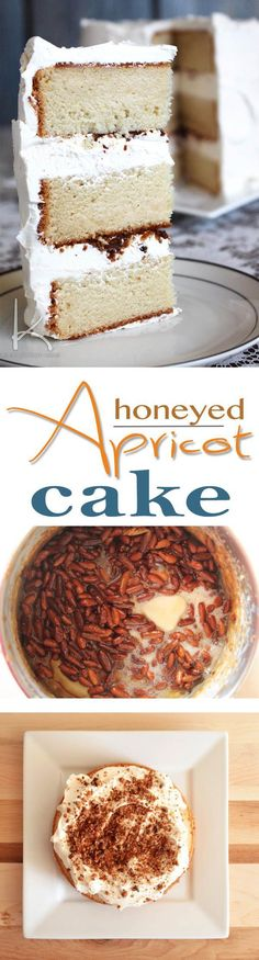Full recipe and easy step-by-step guide for Kara's Honeyed Apricot Cake as seen on Duff Till Dawn on Food Network. Sweet and delicate honey and apricot cake filled with tonka bean buttercream and candied pignoli (pine nut) crunch. Full recipe and Best Cake Recipes, Sweet Recipes, Favorite Recipes, Party Desserts, Dessert Recipes, Baking Recipes, Soup Recipes, Apricot Cake, Gourmet Cakes