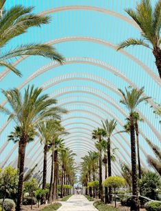 City of Arts and Sciences of Valencia … – Holidays Oceanografic Valencia, Valencia Beach, Beautiful Places To Visit, Places To See, Budapest, European City Breaks, Taj Mahal, Moraira, Cultural Architecture