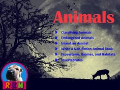 Animals: This six product bundle includes Classifying Animals, Endangered Animals, Invent an Animal Project, Write a Non-fiction Animal Book, Habitats, Invertebrates.  It includes about 250 pages of activities, Powerpoint presentations, writing activities for higher level thinking skills, problem solving skills, and assessing. It also has riddles, rubrics, an assessment, and more. Ryan Nygren (photo by - http://www.flickr.com/photos/yasinhasan/
