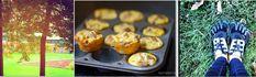 egg muffin header