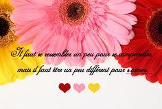 Message d'amour: Proverbes et citations d'amour en image