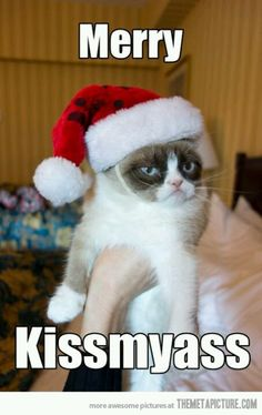 Grumpy cat Bahaha. Sounds like Christmas at my dads side of family