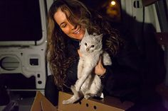 """Sadly, too many kittens die as a result of seeking warmth under the hood of a vehicle. A good trick to prevent this is to honk your horn then wait a few minutes before starting your car. """"Miracle"""" Kitten Survives Ride Under Car Hood in Freezing Temperatures"""