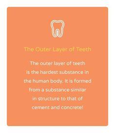 H εξωτερική στρώση του δοντιού είναι η πιο σκληρή ουσία στο ανθρώπινο σώμα. E-Dentistry Dental Fun Facts, Dental Jokes, Dentist Humor, Dental Health, Dental Care, Dental Hygiene, Dental Images, Dental World, Fun Fact Friday