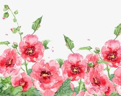Watercolor spring flowers, Watercolor, Spring PNG and PSD