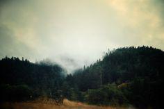 Road Trip, NorCal