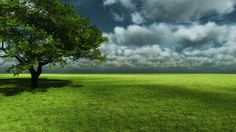 http://all-images.net/fond-ecran-paysage-nature1166/
