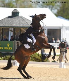 Jennie Jarnstrom had to go home early when Cape Town proved unwilling to play dressage at Rolex Kentucky. Photo by Sara Lieser.