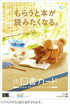 "Clever Shiba! (I think ""もらうと本が読みたくなる"" means ""I want to read this book I received""; but it might mean ""I want to get this book and read it"".."