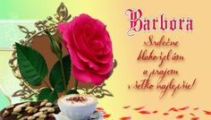 Barbora Srdečne blahoželám a prajem všetko najlepšie!:
