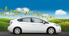 my next car; blizzard pearl Prius