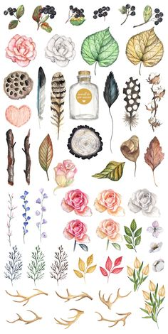 Vintage collection. Watercolor by JuliaBadeeva on @creativemarket