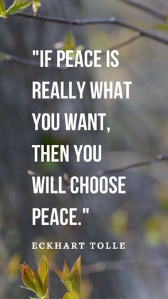 "Eckhart Tolle Quote ""If peace is really what you want, then you will choose peace. Zen Quotes, Peace Quotes, Spiritual Quotes, Wisdom Quotes, Quotes To Live By, Motivational Quotes, Life Quotes, Inspirational Quotes, Amazing Quotes"