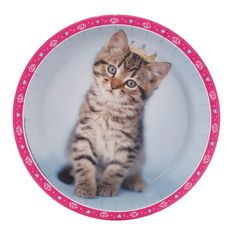 rachaelhale Glamour Cats Dinner Plates | BirthdayExpress.com