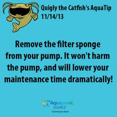 Remove the filter sponge from your pump. It won't harm the pump, and will lower your maintenance time dramatically! #aquaponics #gardening #pump #plumbing #tip