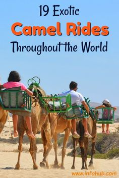"Experience the exotic sensation of ridding on camel's back in a caravan amid the desert, meeting nomadic tribes, learning about their way of life and centuries-old traditions. From Africa to the Camel Rides: Middle East to India, get yourself aboard a ""desert-ship"" on the tours featured in this section and expand your cultural horizons."