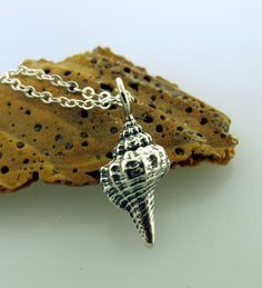 Silver Shell Necklace in sterling silver by by KathrynRiechert