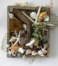 Shells, fishnet, driftwood in old box