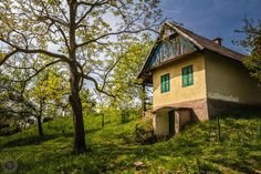 This picture was taken in hungary. A small house on the vineyard  Hope you like it :) and I am happy about some comments.