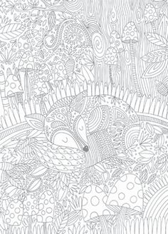 Giant Panda Page From My Animal Dreamers Coloring Book Im Working