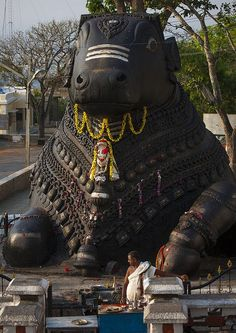 Giant bull in beautiful Mysore!!