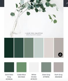 The Wildcraft - Squarespace Website Design and Branding in Tacoma House Color Schemes Interior, Room Color Schemes, Room Colors, House Colors, Paint Colors, Colours, Palette Deco, Color Pad, Pantone