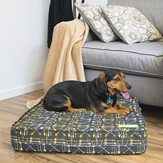 Orthopedic Dog Bed With Waterproof Encat Review