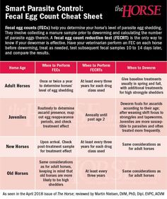 Use this cheat sheet to help determine when to perform fecal egg counts, fecal egg count reduction tests, and when to deworm horses of various age groups. Middle Tennessee State University, Horse Magazine, Horse Treats, Horse Books, Metabolic Syndrome, Clinical Research, Horse Care, Cheat Sheets, The Only Way