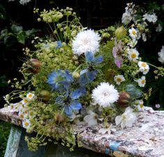 Posy of celery fowers, nigella, and cornflowers by Watch The Flowers Grow https://www.facebook.com/pages/Watch-the-flowers-grow/118103221673618?fref=ts #britishflowers