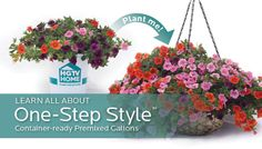 HGTV HOME Plants One-Step Style™