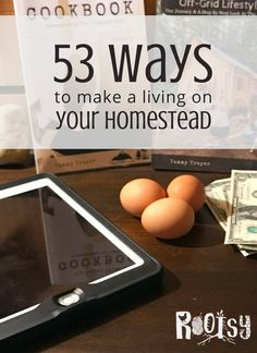 You don't need a lot of property to make this happen. Get your ideas flowing about making a living on your homestead. These 53 ways will help you get started   Rootsy.org