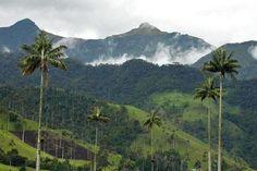 Te muestro paisaje de Colombia, vení ponete el cinturón