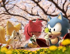 Classic Sonic, Tails, and Amy having a picnic. So cute!