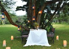Falaza game Star Game Lodge accommodation in Hluhluwe Secure online payment! Game Lodge, Outdoor Seating, Spa, Romantic, Table Decorations, Dinner, Games, Home Decor, Dining
