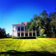 A beautiful morning sun highlights the doric columns surrounding historic Dunleith in Natchez, Mississippi.  It's a great place to stay and then dine at The Castle restaurant, located right on the grounds of the home.