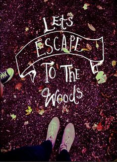 Let's escape to the woods
