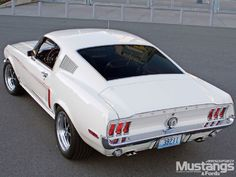 """Figure out more information on """"Ford Mustang"""". Browse through our website. Mustang Cobra Jet, Ford Mustang Shelby Cobra, 1968 Mustang, Ford Mustang Fastback, Mustang Cars, Ford Mustangs, Shelby Gt500, Classic Mustang, Ford Classic Cars"""