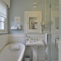I want this sink, have this tub, love the wainscot and the pale blue walls